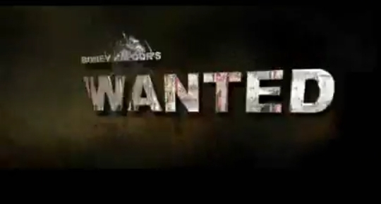 Wanted 2009 Salman khan movie