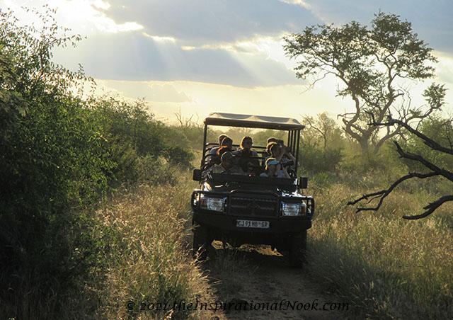 4x4, safari, Mosetlha Bush Camp, Madikwe Game Reserve, South Africa