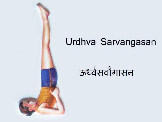 Urdhva Sarvangasana: Urdhva Sarvangasana in Hindi