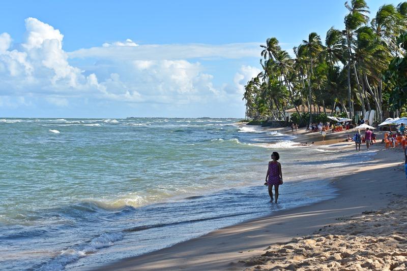 Praia do Forte como chegar: transfer, ônibus, passeio bate-volta
