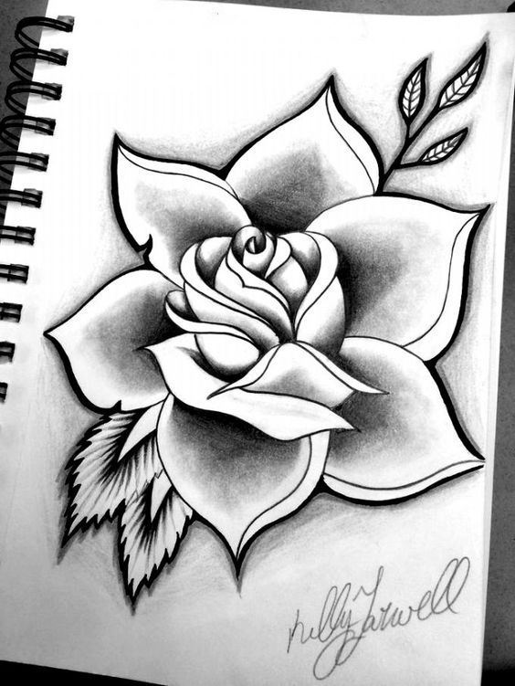 Distintas ideas de Rosas para dibujar