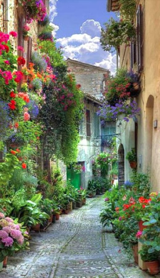 If you are bumped off, insist on cash rather than vouchers.