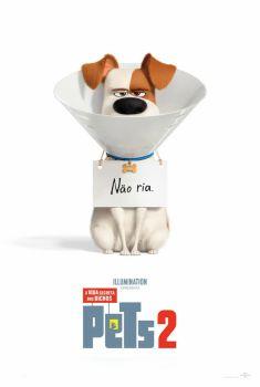 Baixar Filme Pets: A Vida Secreta dos Bichos 2 Torrent Dublado e Legendado Completo em HD Grátis