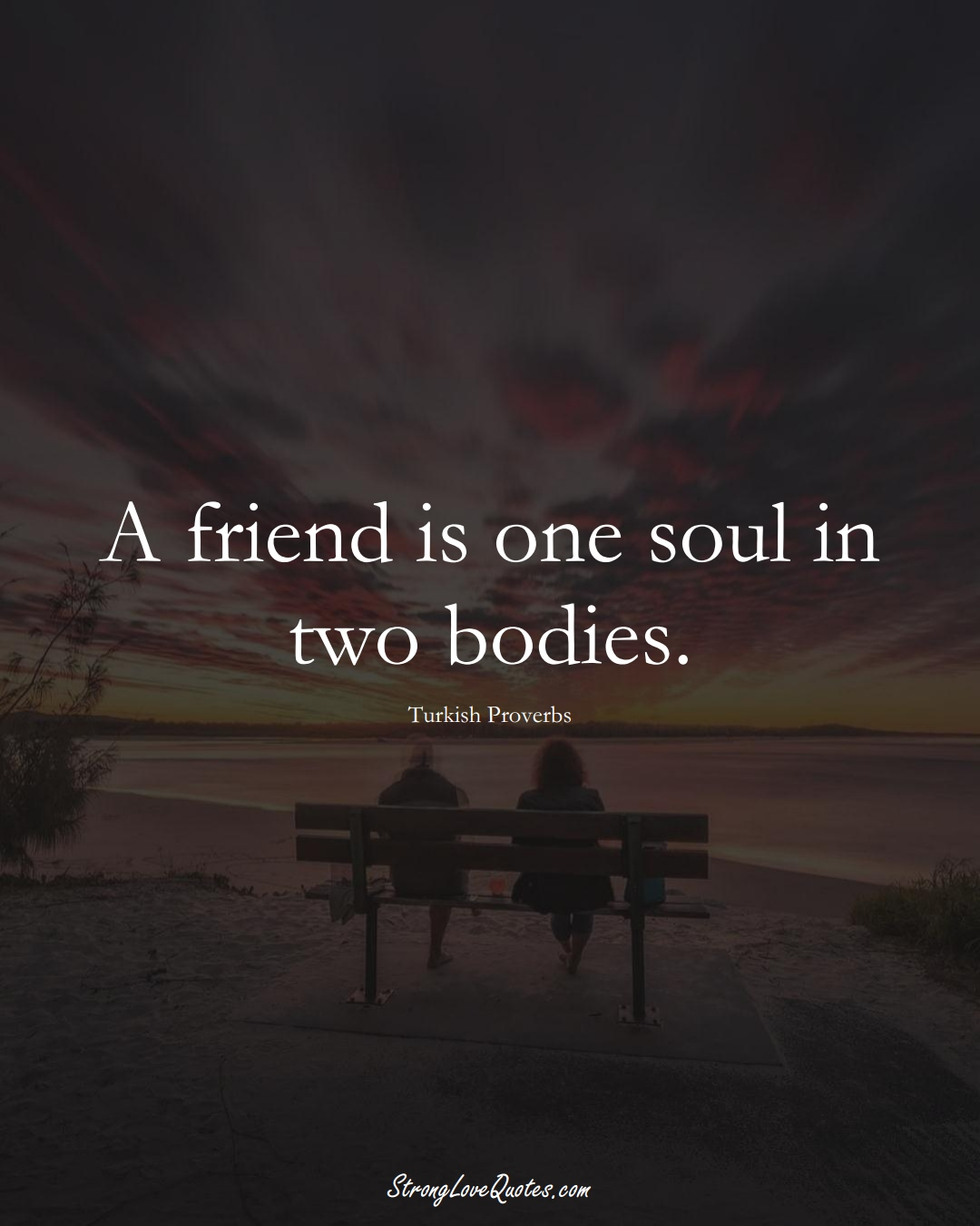 A friend is one soul in two bodies. (Turkish Sayings);  #MiddleEasternSayings