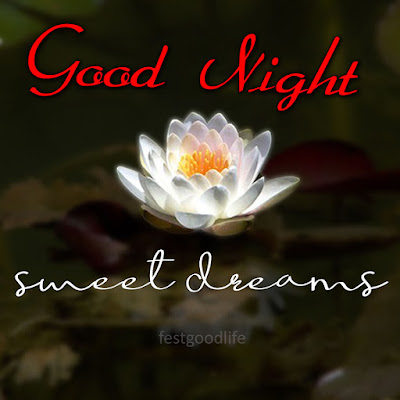 good night images  photos download gn