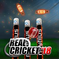 Real Cricket 18 v1.1