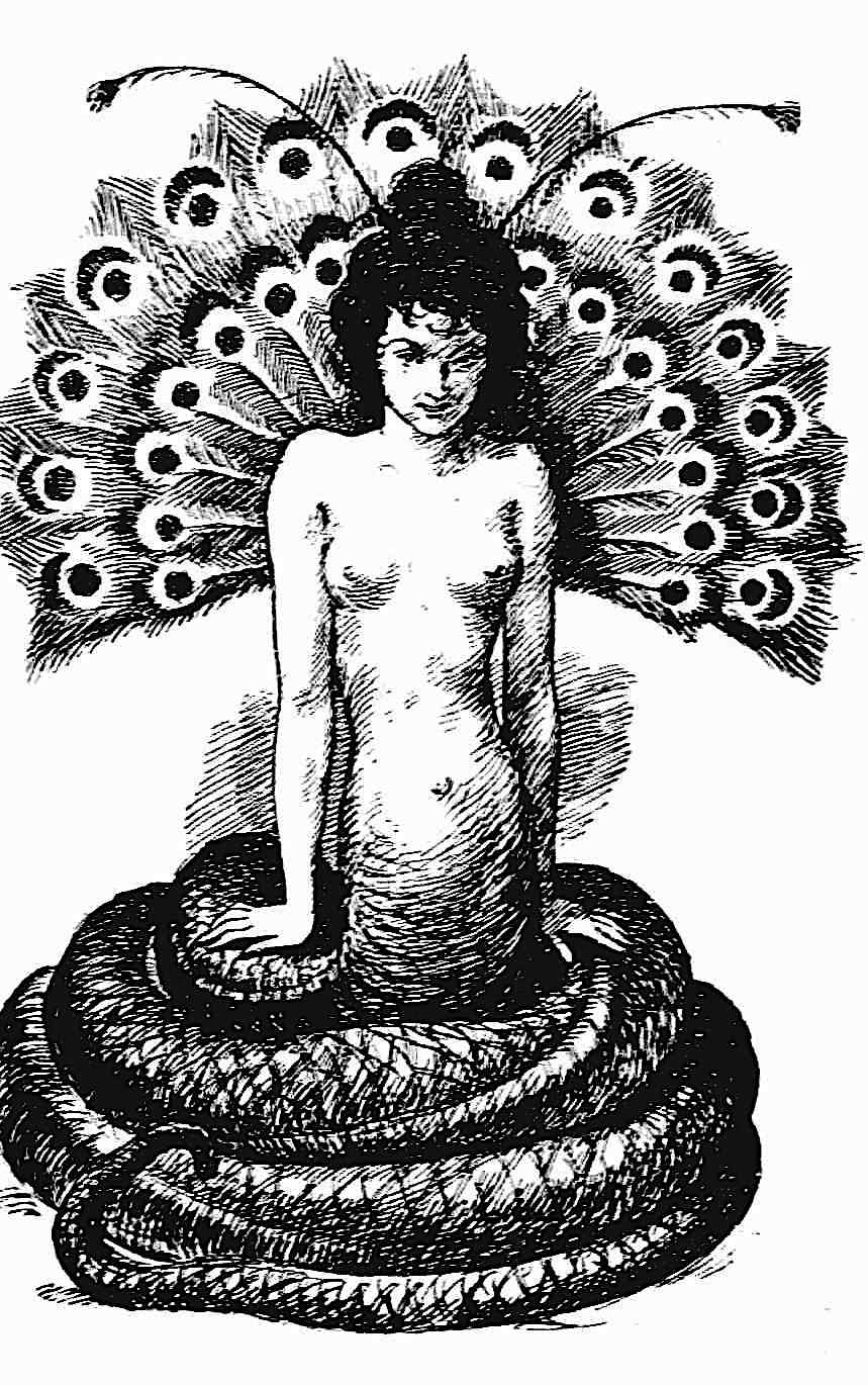 a Louis Moe illustration, 1897 demon woman