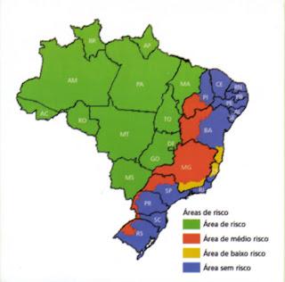 Febre Amarela no Brasil