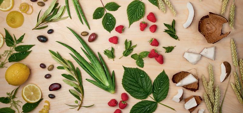 Ingredientes simples e naturais