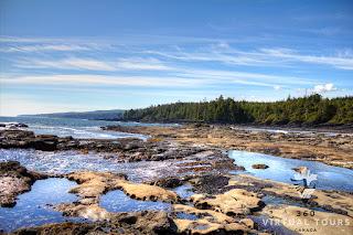 Botanical Beach Provincial Park Port Renfrew Vancouver Island