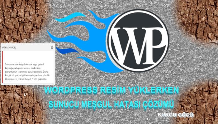 Wordpress Sunucu Meşgul Hatası Sorunu ve Çözümü