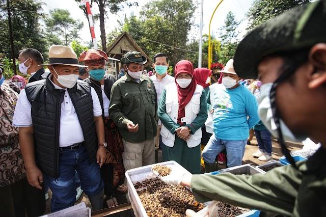 """Wali kota Bandung Resmikan Kawasan Pertanian Terpadu """"Sekemala Integrated Farming"""" di Uber"""