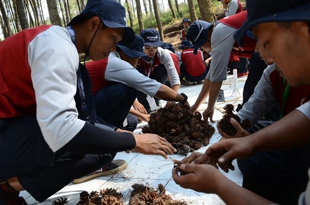 Outbound Training Lembang Bandung Jawa Barat - EO Outbound Lembang Bandung
