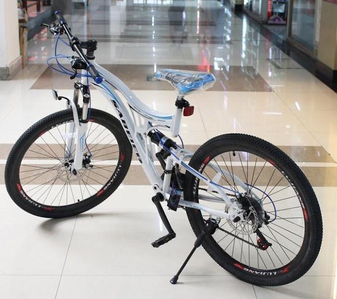 Sepeda Dewasa