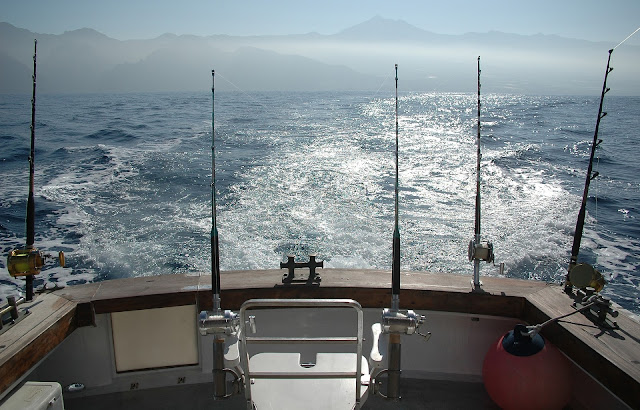 Deep Sea Fishing –  Is It Right For You?