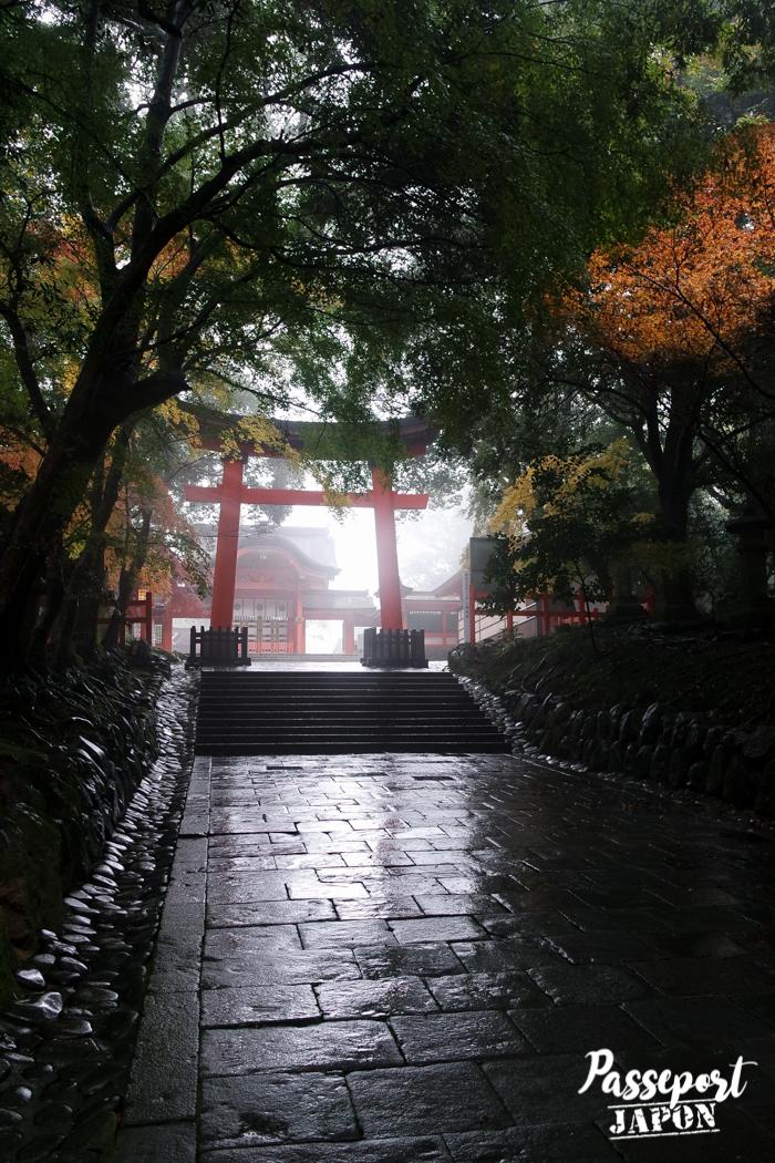 Torii dans la brume, sanctuaire Usa-jingû, Oita