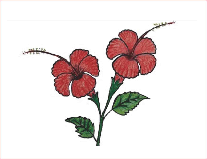 10+ Contoh Gambar Bunga Mawar Animasi