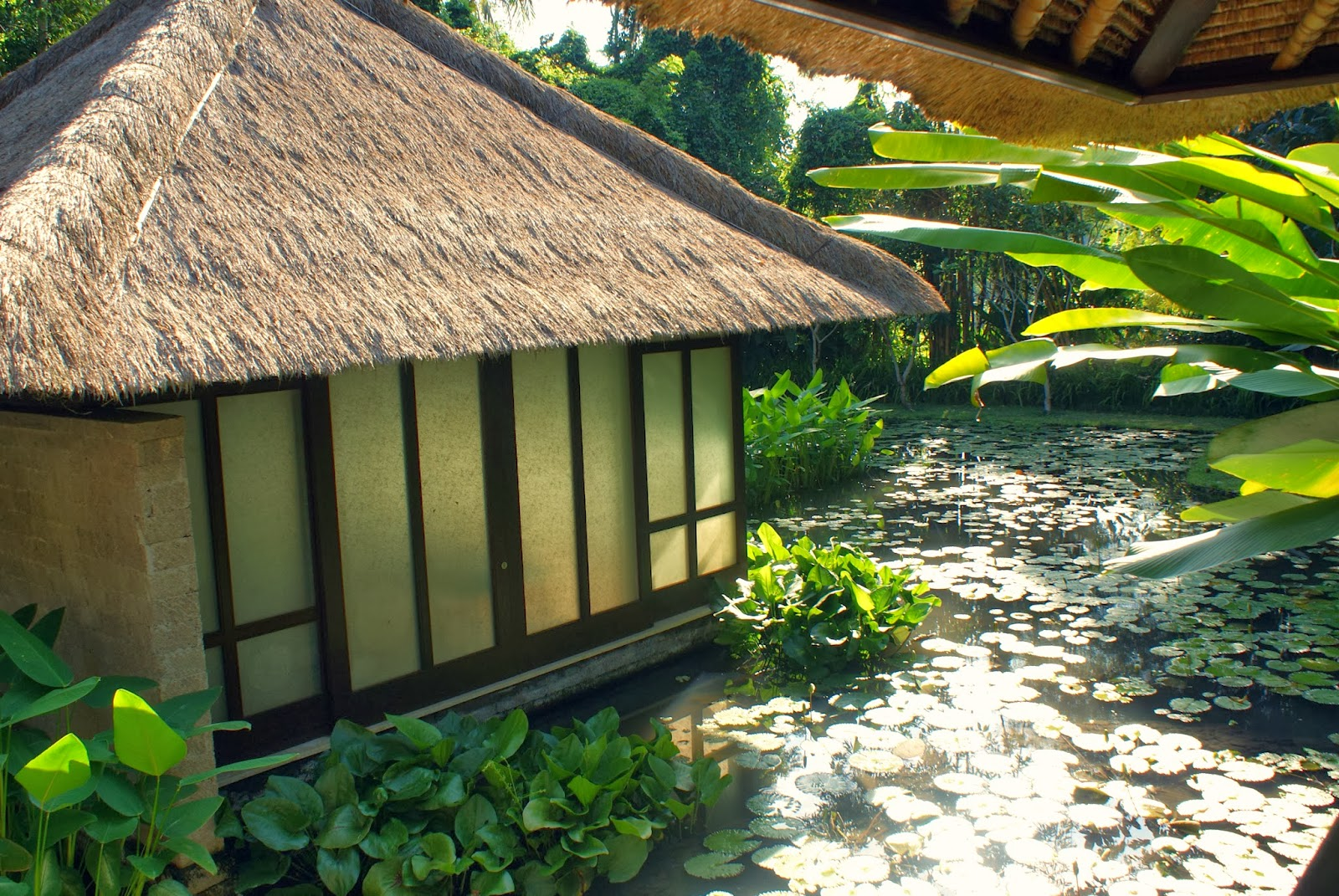 Muladhara Treatment at the Four Season Sayan Spa Villas Review