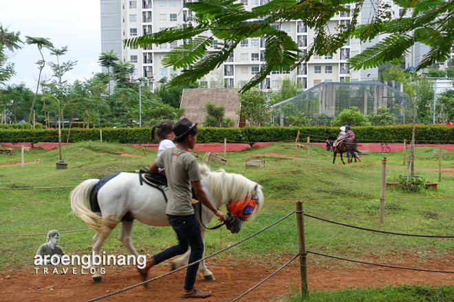 horse riding kuda scientia square park tangerang