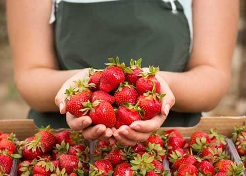 فوائد الفراولة ، أكثر من 16 فائدة مذهلة