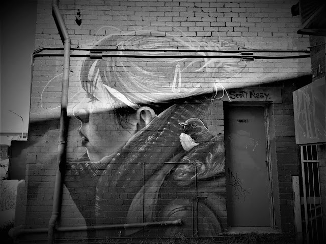 Katoomba Street Art   Scott Nagy