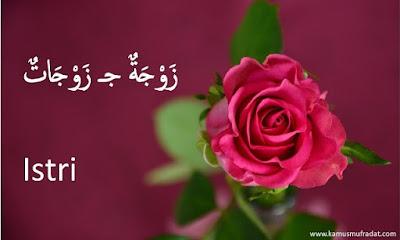 bahasa arab istri