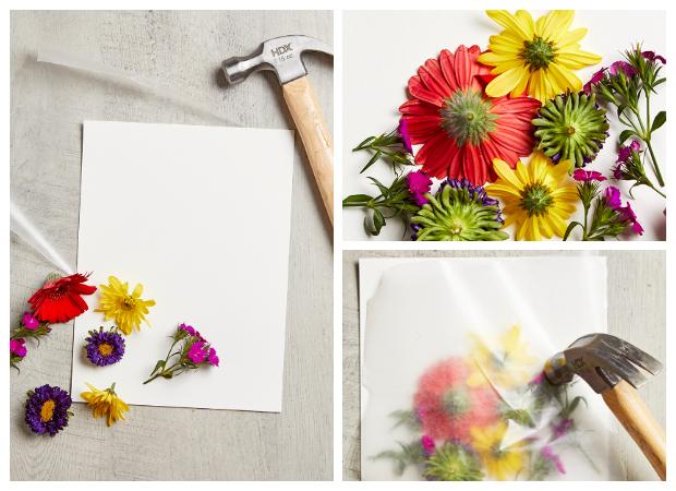 Πίνακες - Κάδρα με αποτύπωμα Φυσικών Λουλουδιών