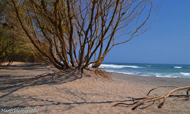 2 Pantai Jogja dan Rekomendasi Properti Murahnya