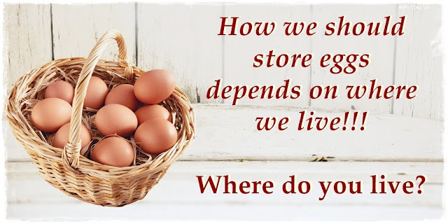 how-to-store-eggs