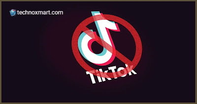 Judge Is Going To Take Decision On Ban Of TikTok Downloads By Trump Today