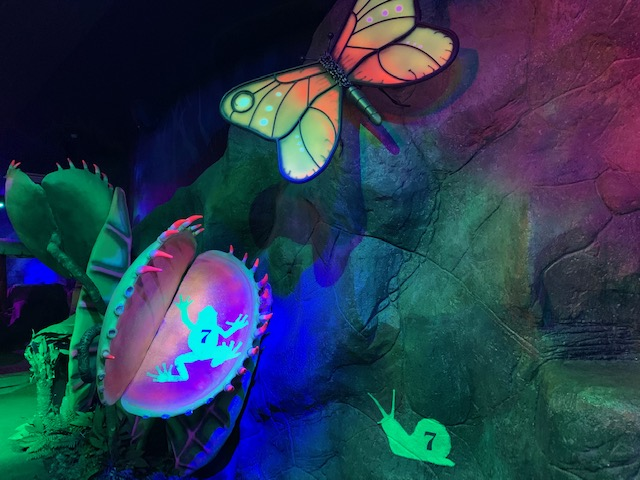 Butterfly and venus fly trap - crazy golf decorations