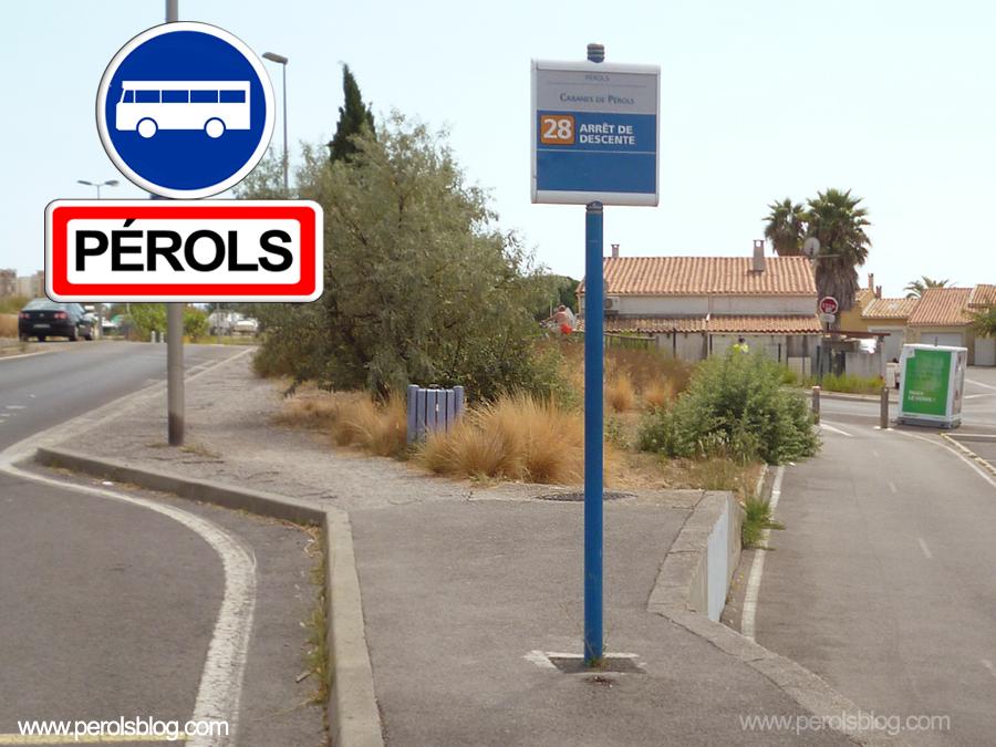 Bus TAM Cabanes de Pérols