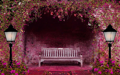 bench-flowers-garden-walls-pictures