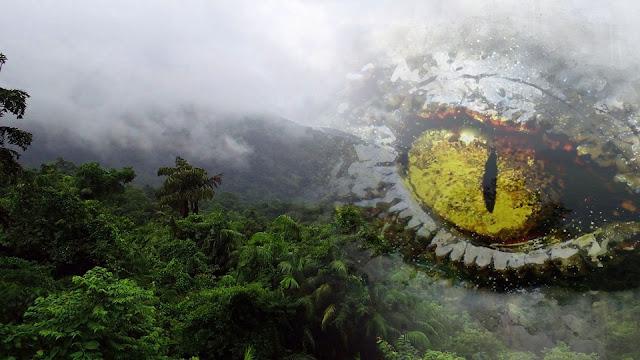غابات,الأمازون,الغابات المطيرة,وحوش,عملاقة,حيوانات