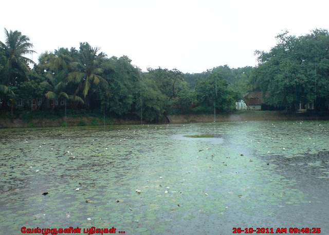 Thiruvellakulam Srinivasa Perumal Temple