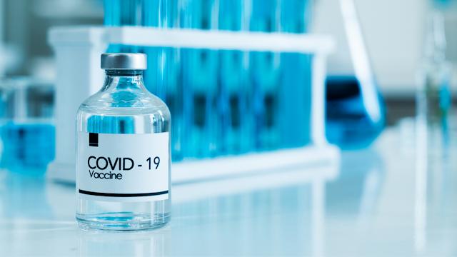 Vaksin Covid 19