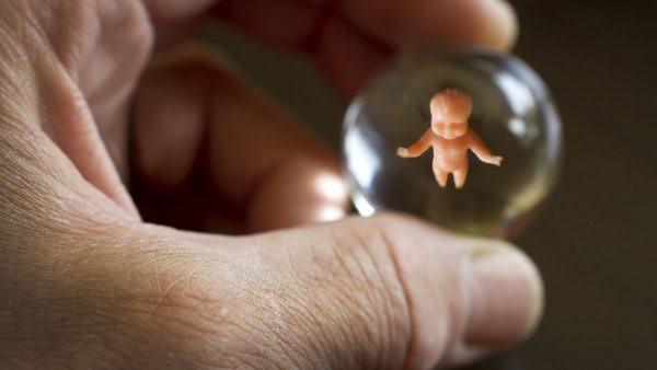 Почему мы рождаемся: кто наши родители на самом деле