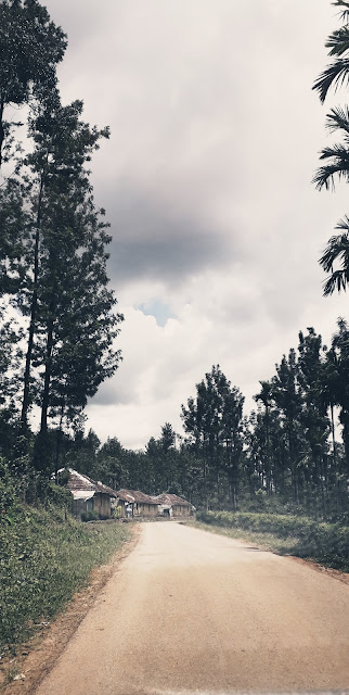 OnlyOdds - Chikmagalur is a must to visit place.
