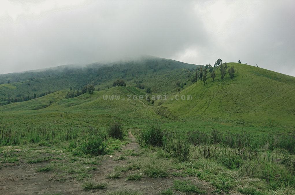 Bukit Teletubies Bromo, Persis di Film Animasi