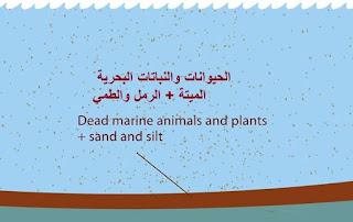 كيفية استخراج النفط من باطن الارض