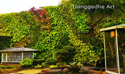 tukang taman vertikal garden murah