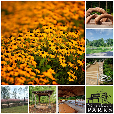 How Urban Parks are Bringing Nature Closer to Home