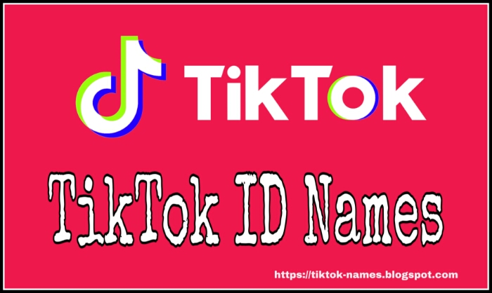 Grwm Usernames For Tiktok – Everyone knows that the username plays a big role in whatever social media platform it is because by looking at names, we know that what kind of account it is and nowadays most people keep upset with the username on tiktok.
