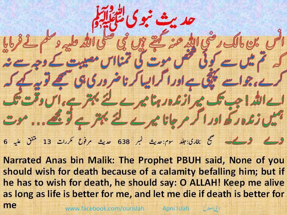 prophet muhammad essay essay on muhammad ali jinnah nestddnsia essays on holidays argumentative essay conclusion