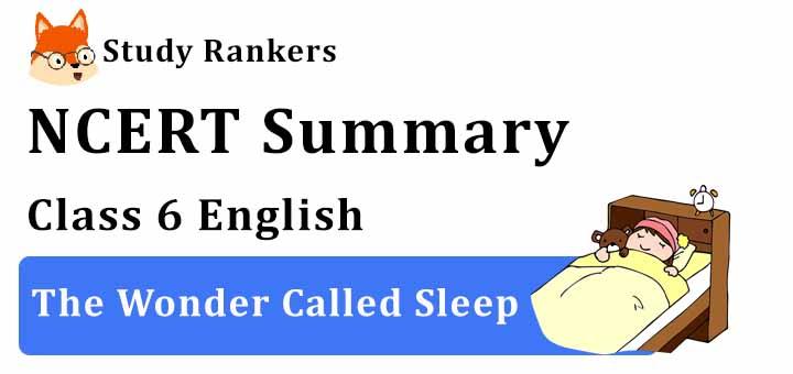 The Wonder Called Sleep Class 6 English Summary