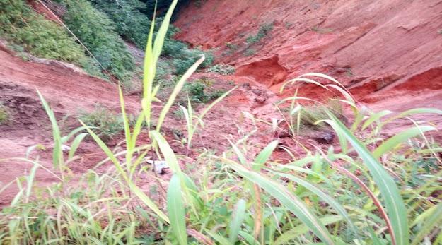 image: Anianta Landslide Ecological Challange
