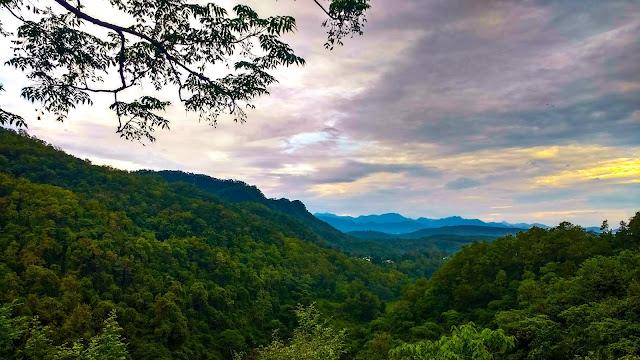 राजाजी नेशनल पार्क का शीर्ष दृश्य