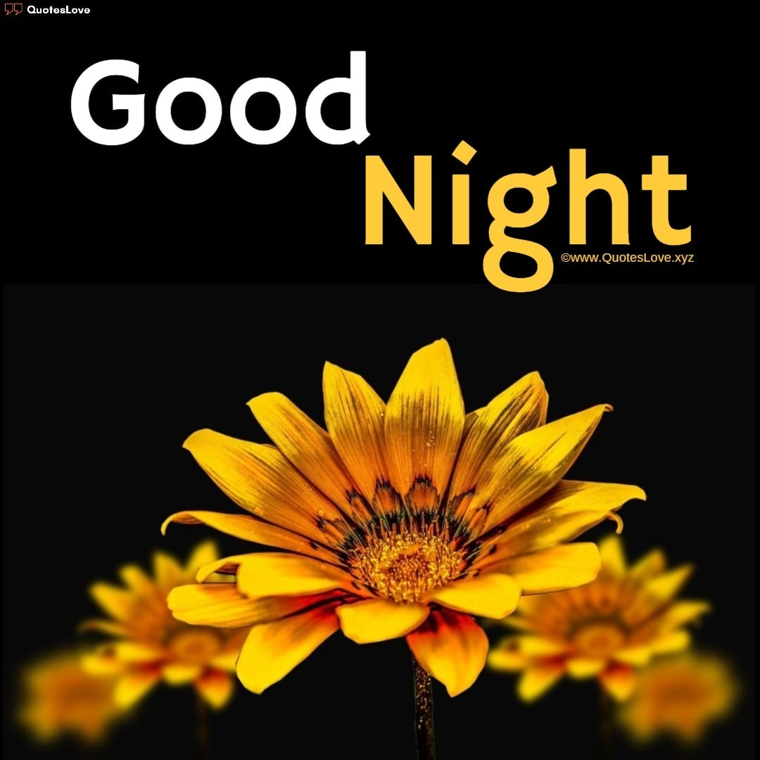 good night images flowers