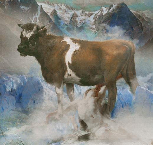 Vaca Audumbla