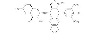 Etoposid-mipa-farmasi.com